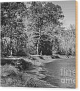 Chesapeake And Ohio Canal And Towpath Wood Print