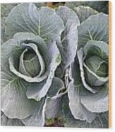 Cabbage Duo Wood Print