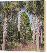 Cabbage Palm Wood Print