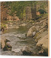 Cabin By The Creek Wood Print