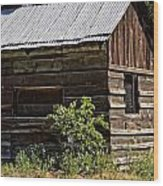 Cabin In The Wilderness Wood Print