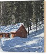 Cabin On Grand Mesa Co Wood Print