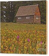 Cabin On Grand Mesa Wood Print