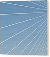 Cable Bridge Detail Wood Print