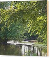 Cacapon River On  127 Wood Print