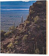 Cacti Covered Rock At Tucson Mountains Wood Print