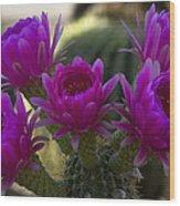 Cacti Flower Bouquet  Wood Print