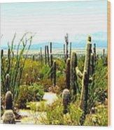 Cacti Garden Wood Print