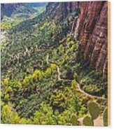Cacti View Of Zion Wood Print