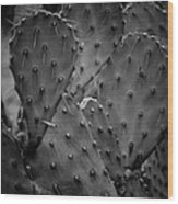 Cactus 5264 Wood Print