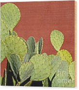Cactus Against Orange Wall Wood Print