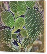Cactus  Wood Print
