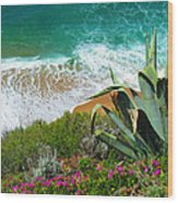 Cactus Coast Wood Print