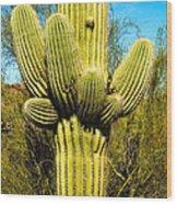 Cactus Face Wood Print