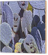 Cactus Faces Wood Print