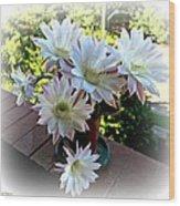 Cactus Flower Perfection Wood Print
