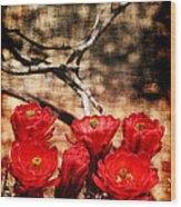 Cactus Flowers 2 Wood Print by Julie Lueders