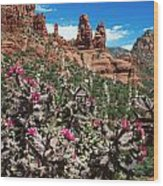 Cactus Flowers And Red Rocks Wood Print