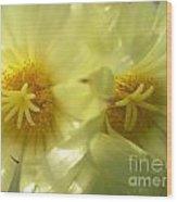 Cactus Flowers Wood Print
