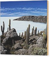 Cactus Forest And Salar De Uyuni Wood Print