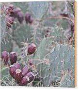 Cactus Fruit Wood Print