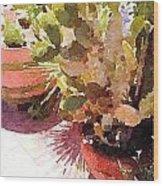 Cactus Garden Wood Print