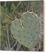 Cactus Heart Wood Print by Old Pueblo Photography