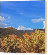 Cactus In Spring Wood Print