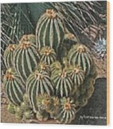 Cactus In The Garden Wood Print