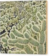 Cactus  Wood Print by Merrick Imagery