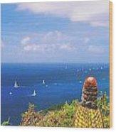 Cactus Overlooking Ocean Wood Print