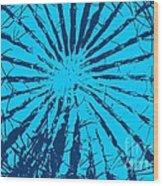 Cactus - Reunion Island-indian Ocean Wood Print by Francoise Leandre