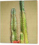 Cactus Towers Wood Print