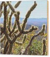 Cactus View Wood Print