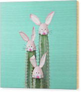 Cactus With Easter Rabbit Decorations Wood Print