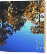 Caddo Lake Reflections Wood Print