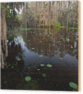 Caddo Lake, Texas's Largest Natural Lake Wood Print