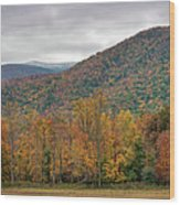 Cades Cove, Great Smoky Mountains Wood Print