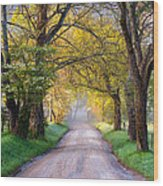 Cades Cove Great Smoky Mountains National Park - Sparks Lane Wood Print by Dave Allen