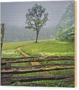 Cades Cove Misty Tree Wood Print