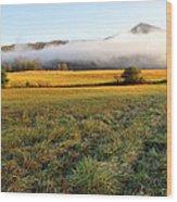 Cades Cove Valley Wood Print
