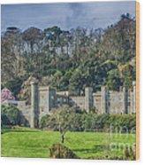 Caerhays Castle Wood Print