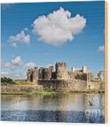 Caerphilly Castle 1 Wood Print