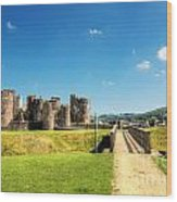 Caerphilly Castle 2 Wood Print