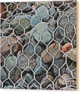 Caged By Barbara Griffin Wood Print