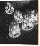 Caged Lights Wood Print