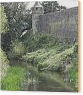 Cahir Castle Wall And River Suir Wood Print