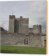 Cahir's Castle Second Courtyard Wood Print