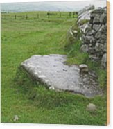 Cairn T At Loughcrew Wood Print