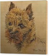 Cairn Terrier Dog Wood Print